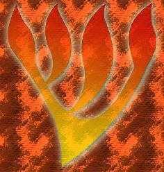Le Shin aux quatre branches