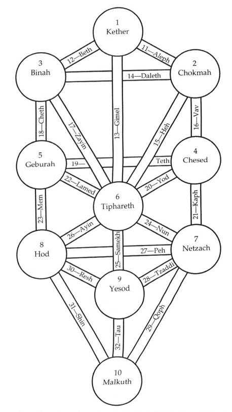 arbre_diagramme