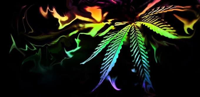 Le Christ, le Saint Chrême et le Cannabis